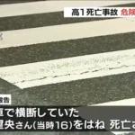 大阪市西淀川区で起きた女子高生死亡事故 判決が決まるも多数の疑問の声