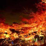 筑波山の紅葉2018!見頃はいつ?ライトアップや 駐車場、混雑状況についても