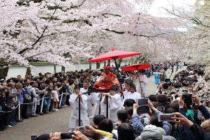 【2019年】醍醐寺桜祭りの混雑状況は?見ごろ時期や開花状況を調べる方法も紹介!